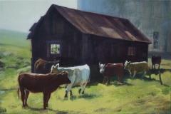 David Reed-Shaffer's