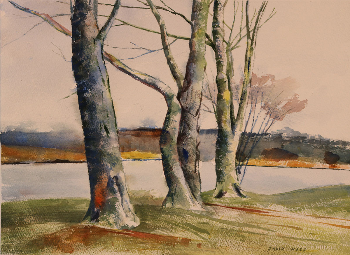 David Reed_Lakeside Study